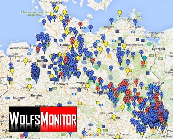 Wölfe In Brandenburg Karte.Karte Wölfe Rudel Nachweise Und Totfunde In Deutschland